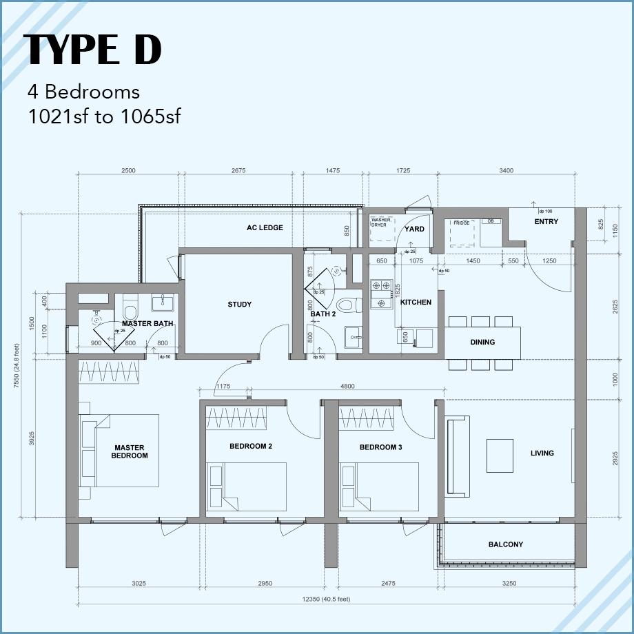 Type D: 4R 2B 2CP
